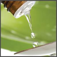 biotherapeutic-drainage